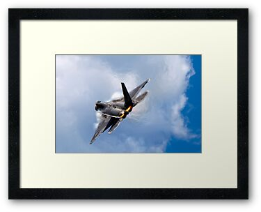 F-22 Raptor by Janet Fikar