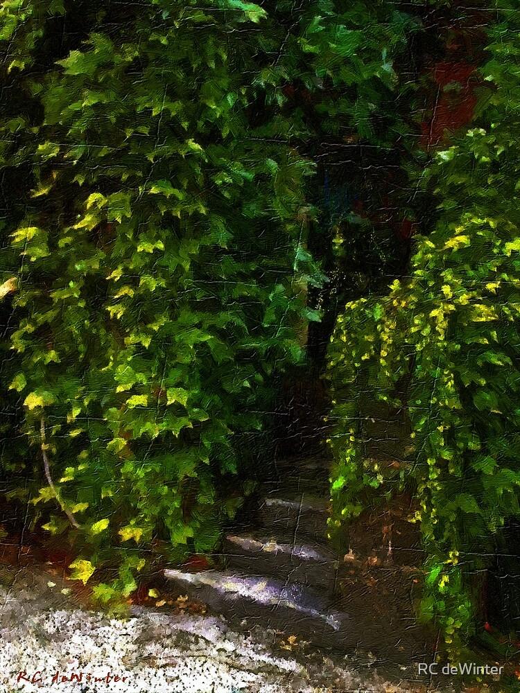 Hidden Hermitage by RC deWinter
