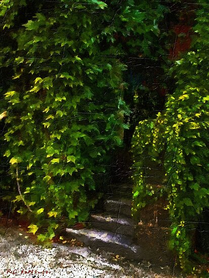 Hidden Hermitage by RC deWinter