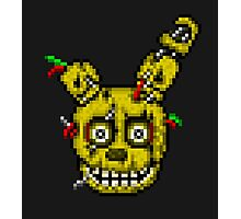 Five Nights at Freddy's 3 - Pixel art - SpringTrap / Golden Bonnie / Rotten Bonnie Photographic Print
