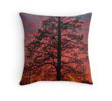 sunfire tree Throw Pillow