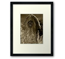 Mary Baily Framed Print