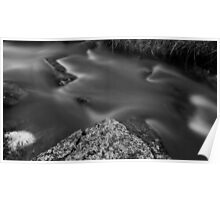 Moss River Rock in Black and White Poster