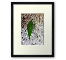 ©NS Green Suit Chilling IA. Framed Print