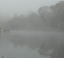 Misty Murrumbidgee  by rosalind