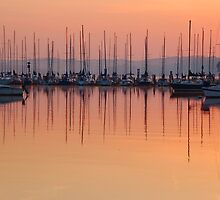 morning calm by dc witmer