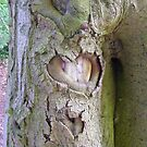 Wooden Heart. by Livvy Young
