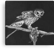 Hunting Owl Canvas Print