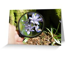 Through the looking glass. Greeting Card