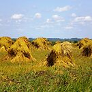 Amish Haystacks by Cathy Klima