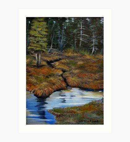 ACRYLIC - The old Moose Swamp Art Print