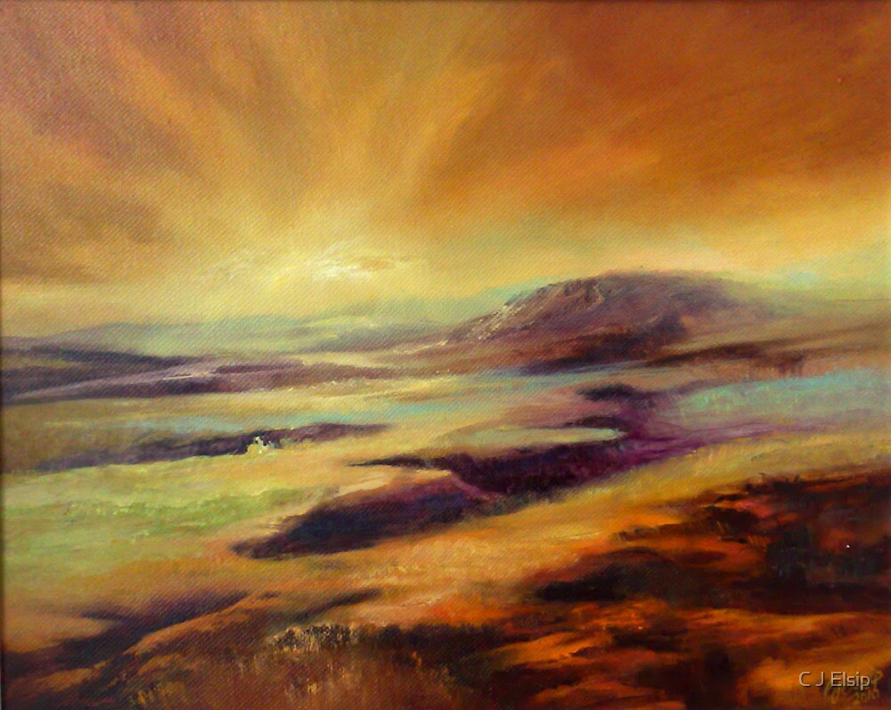 Moorland Dawn by C J  Elsip