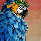 Blue Macaw by ria gilham