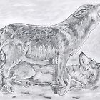 company of wolves. by Peter Allton