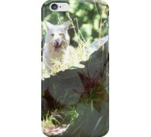 Seattle Wolf iPhone Case/Skin