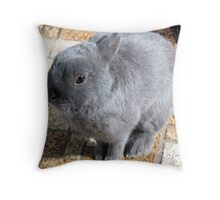 Please Sir, May I Have...a Carrot? Throw Pillow