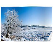 Scandinavian winter Poster