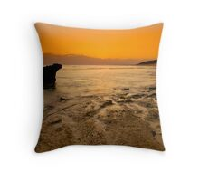 The Dying Light Throw Pillow
