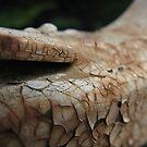 Rusted Wrought Iron by Jennifer  Gaillard