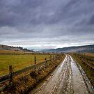 Road Back Home by mosinski