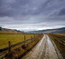 Road Back Home by mosinski