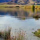 Opuha Lake by Harry Oldmeadow