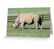 Rhinocerous Greeting Card