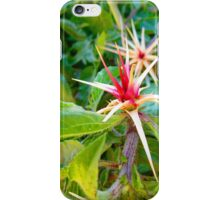 The Desert Flower iPhone Case/Skin