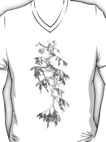 Leafy Sea Dragon -  T-Shirt