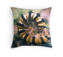 caterpillar - cairns, queensland Throw Pillow