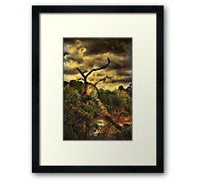 Tree Creek Framed Print