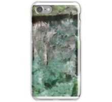 Lady of the Woods by Mary Bassett iPhone Case/Skin