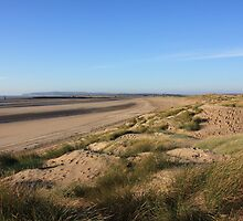 Camber Sands by roskolewis
