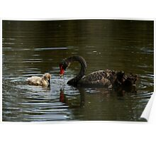The Ugly Duckling and his Mother Poster
