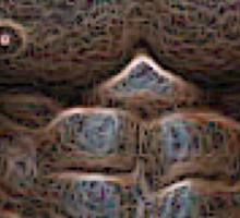 Copper abs Sticker