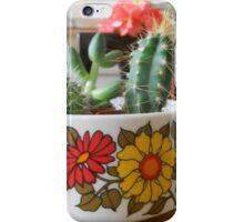 Vintage Cactus iPhone Case/Skin