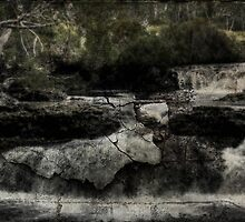 Doctored Falls by Shane Viper