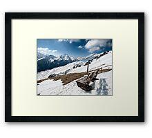 Mountainwatching Framed Print