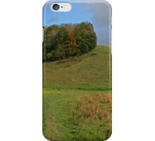 Arundel Park iPhone Case/Skin