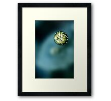 enclosed Framed Print