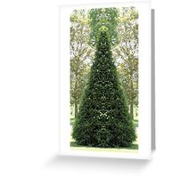 Cone topiary 2 Greeting Card