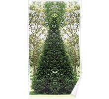 Cone topiary 2 Poster
