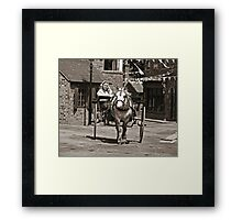 Look out!....It's a trap Framed Print