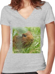 Guinea pig hidden in the grass Women's Fitted V-Neck T-Shirt