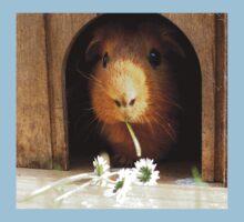 Super cute guinea pig eating Kids Tee