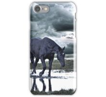 lonesome lady iPhone Case/Skin