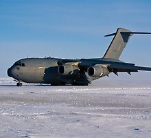 C17 First Landing by reefer