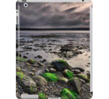 Eternal Sunset iPad Case/Skin