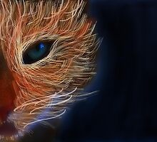 fire cat 2 by Daisy Brooke