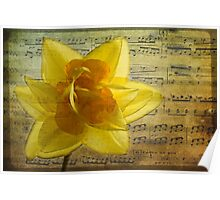 Symphony in yellow Poster